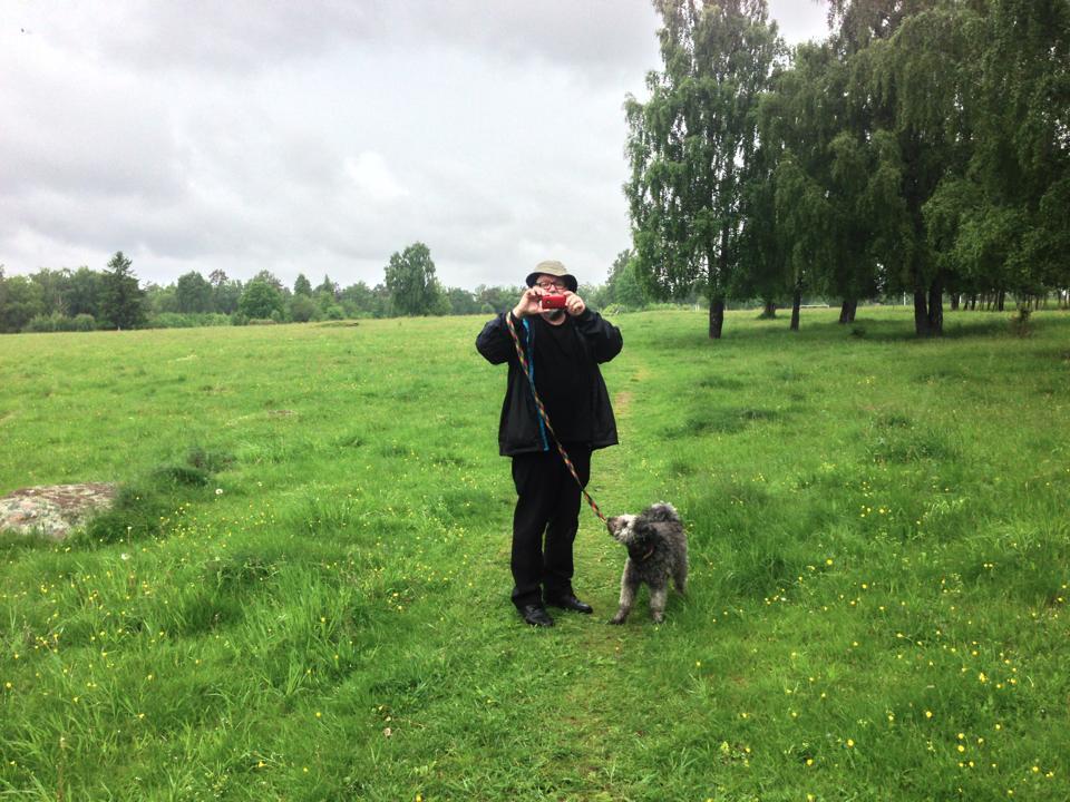 Airbnb för hundpassning